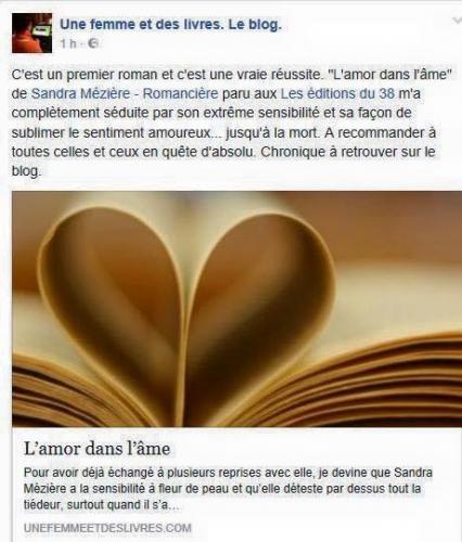 Chronique sur L'amoir dans l'âme de Sandra Mézière.jpg