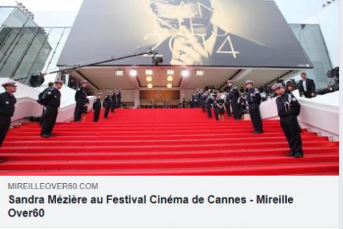 Article livre Festival de Cannes.png