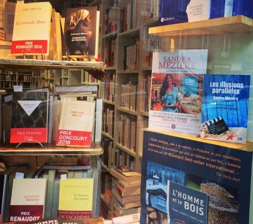 écriture,littérature,salon du livre de paris,salon de livre de paris 2018,écrivain,romancière,livre,dédicace,cinéma,les illusions parallèles,l'amor dans l'âme,paris