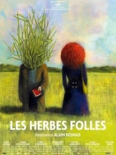 herbes4.jpg