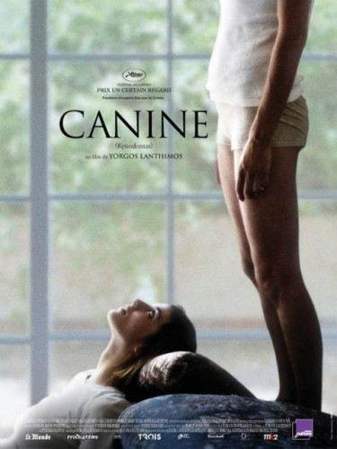 canine3.jpg