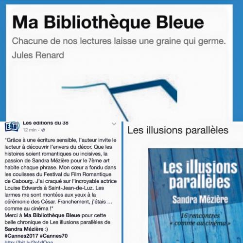 Chronique Les illusions parallèles.jpg